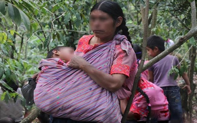 Nuevo ataque armado contra indígenastzotziles
