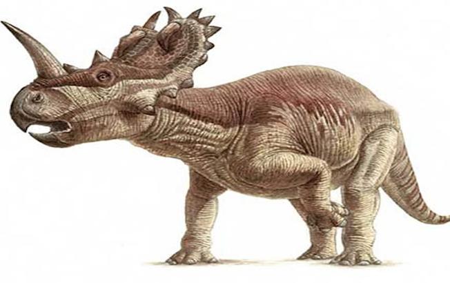 Detectan por primera vez cáncer de hueso en undinosaurio