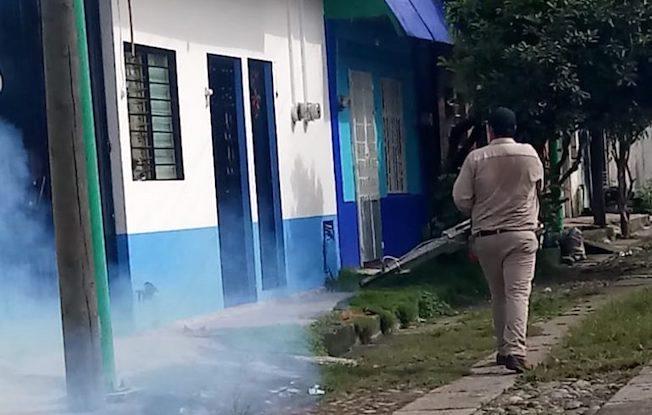 Se mantiene operativo contra dengue, zika ychikungunya