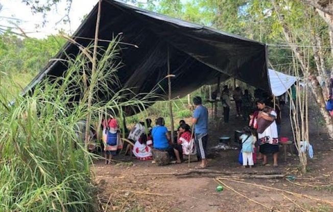 Indígenas denuncian ataques de paramilitares enAldama