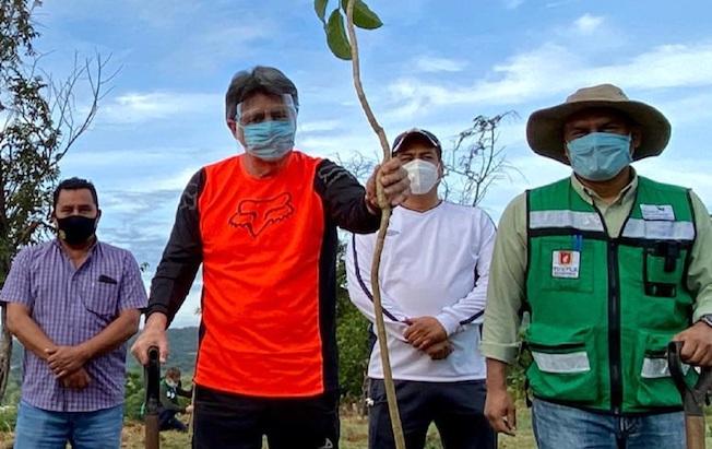 Encabezó Carlos Morales reforestación en Plan deAyala